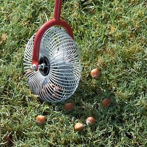 The Little Things Robin Gorsline 39 S Blog