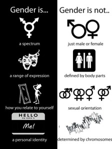 Gender Is Gender Is Not