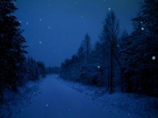 starry night sky in winter