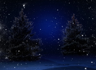 winter_night_snowflakes_merry_christmas_sky_hd-wallpaper-1613250