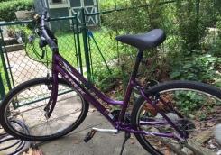 Robin bike